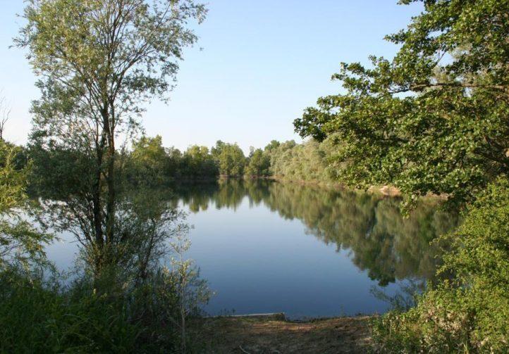 Bill's Lake 1 Image