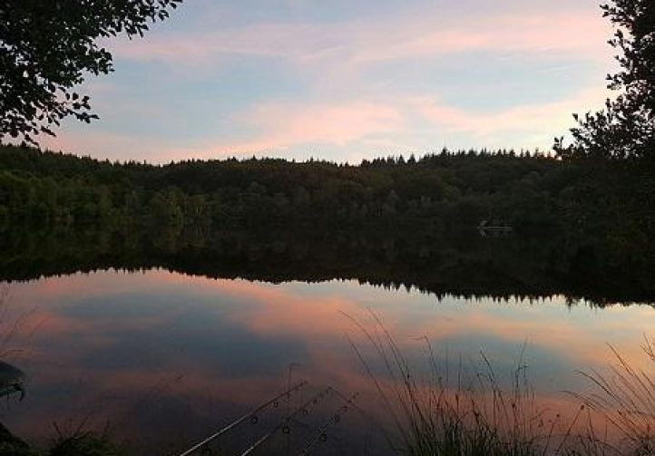 Forest View Lake Image