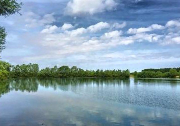 Lac Baleine Image