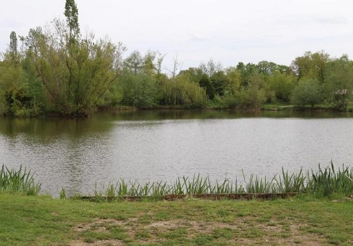 Lac de Laneuville Image