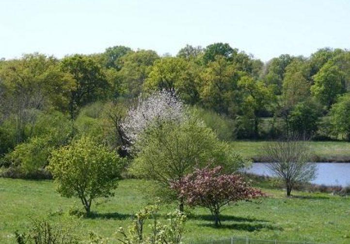 Lac des Demoiselles Image