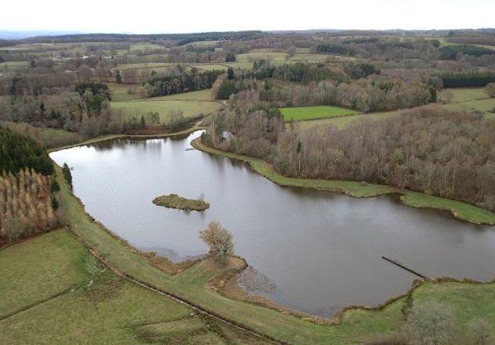 L'étang des Persats Image