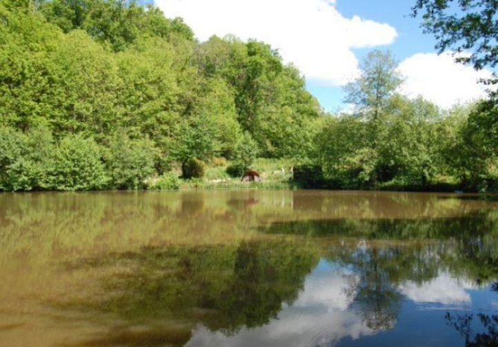 Linden Tree Lakes Image