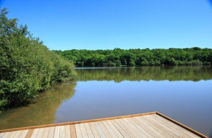 Summer 2017 – Lake Meillant