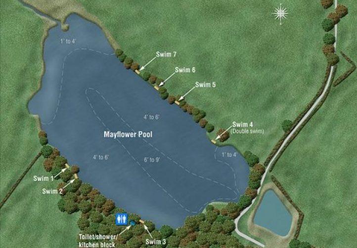 Mayflower Pool Image
