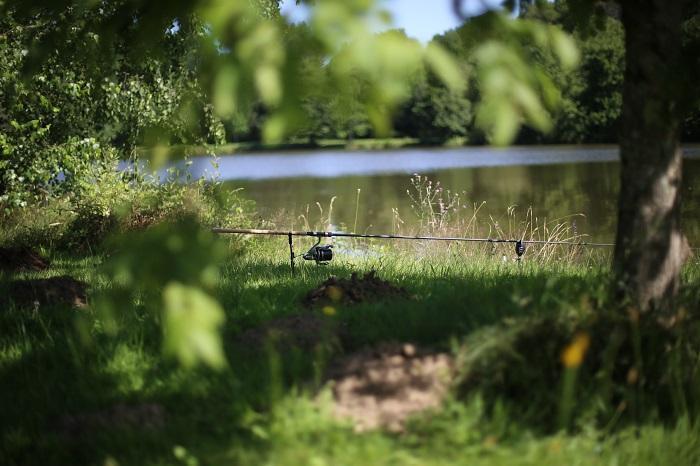 single rod snag fishing