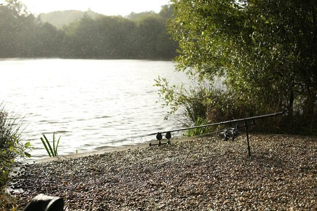 How Weather Patterns can Influence Carp Behaviour