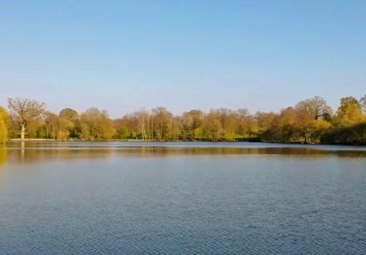 Etang Marolles – Main Lake Image