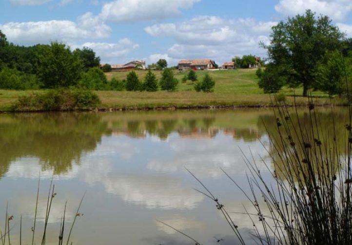 Martins' Lakes – Gite and Coarse Lake Image